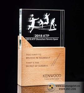 Kỉ niệm chương Pha lê gỗ QTV095